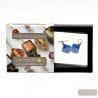 SCOGLIO SATIN BLUE EARRINGS GENUINE VENICE MURANO GLASS